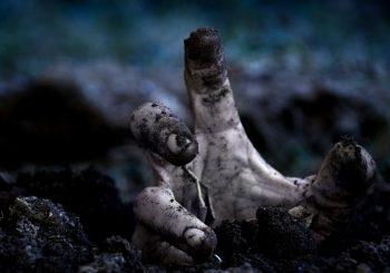 Chlapec na mostě: v liduprázdném světě plném zombies pátrá osamělá hrstka vědců a vojáků po léku na epidemii