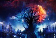 Střípky času: young adult fantasy ze světa mocných mágů, které je okořeněno romantikou i cestováním časem