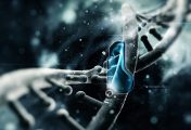 Zachraňte svět před čtyřmi smrtelnými nákazami a postavte se do čela týmu nejlepších vědců na palubě superletadla