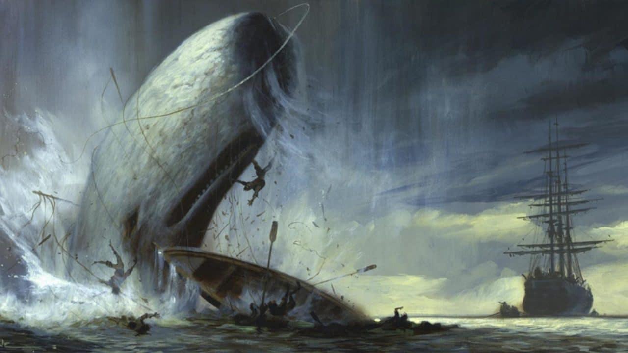 Patrick Ness: A oceán byl naší oblohou cover