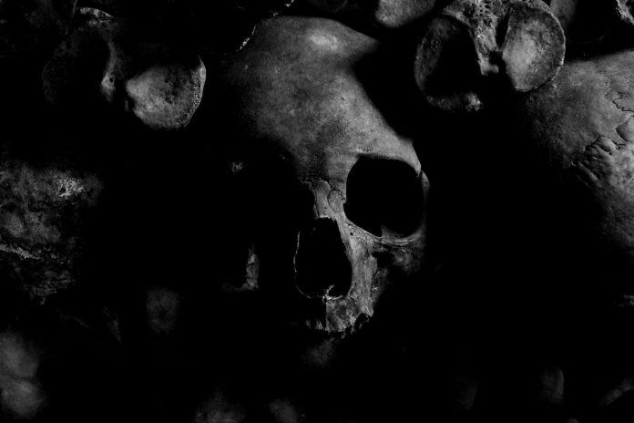 Co číhá v temnotách (kolektiv autorů) cover